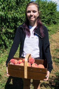 Family - peach picking and apothecary-15